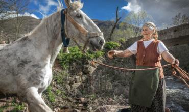 STARA PLANINA – LAST MOUNTAIN STANDING